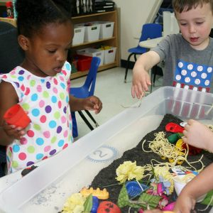 Open Arms Ashburn Virginia Preschool students playing